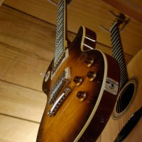 http://www.albedoguitars.com/guitare-electrique/guitare-les-paul/